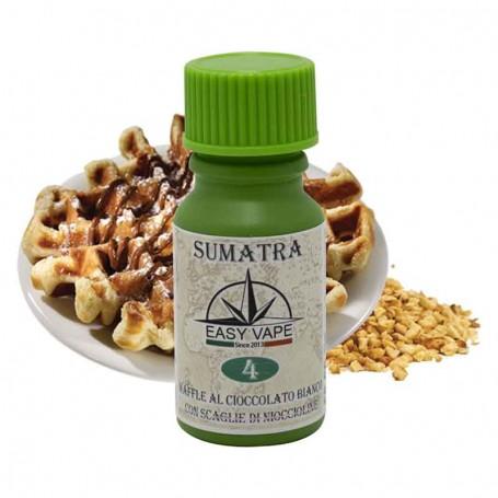 Aroma Concentrato n°4 SUMATRA - Easy Vape